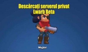 Lwarb Beta serverul privat android