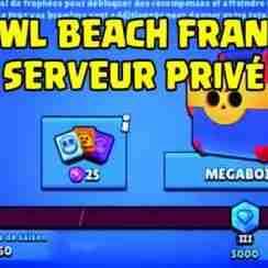 Brawl Beach Français pc