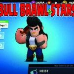 bull brawl stars pc